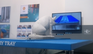TV Pig 1