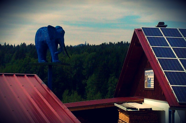 blaue elefanten o