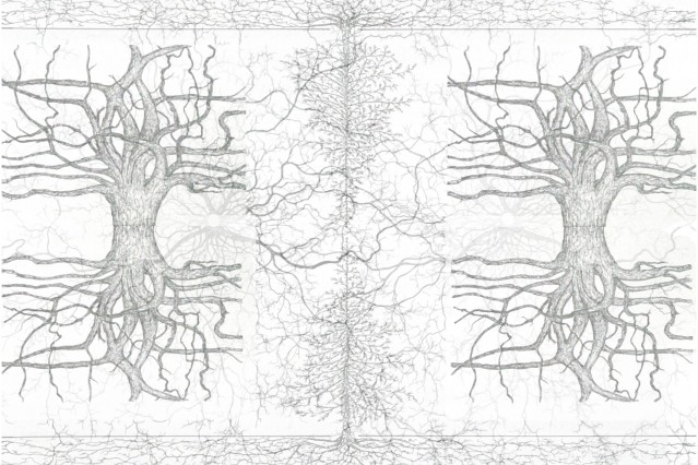 Wurzeldiagramme 11